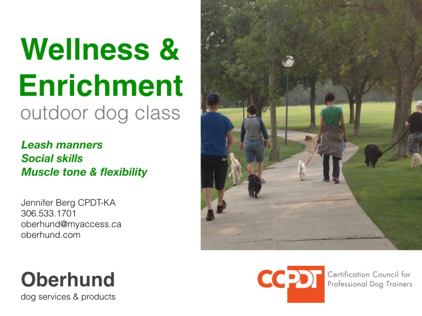 Wellness class ad March:April copy.001