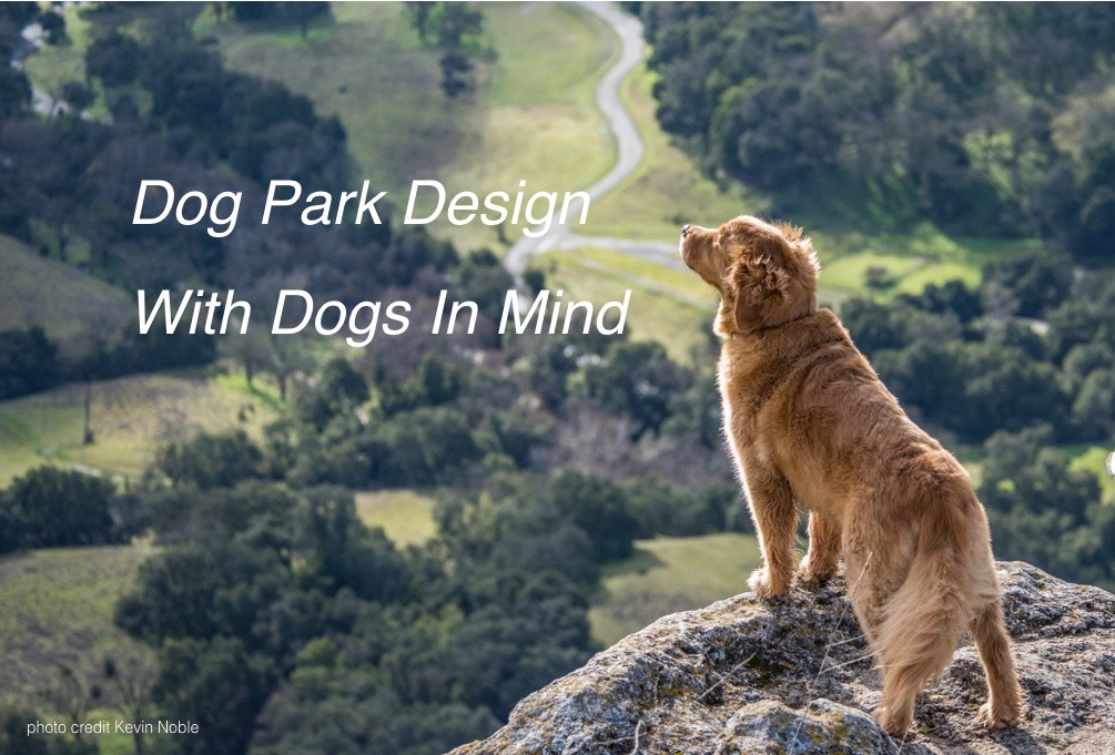 Dog Park Photo with text dog on cliff.001